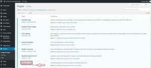 התקנת תוסף LS Cache באתר וורדפרס