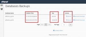 שחזור בסיס נתונים באחסון וורדפרס של Jetpress